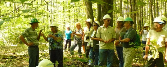 Fourth Sustainable Forest Management Workshop